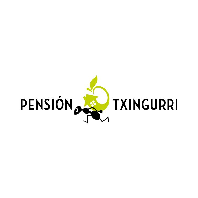 Pensión Txingurri